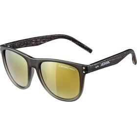 Alpina Ranom Glasses grey gradient matt